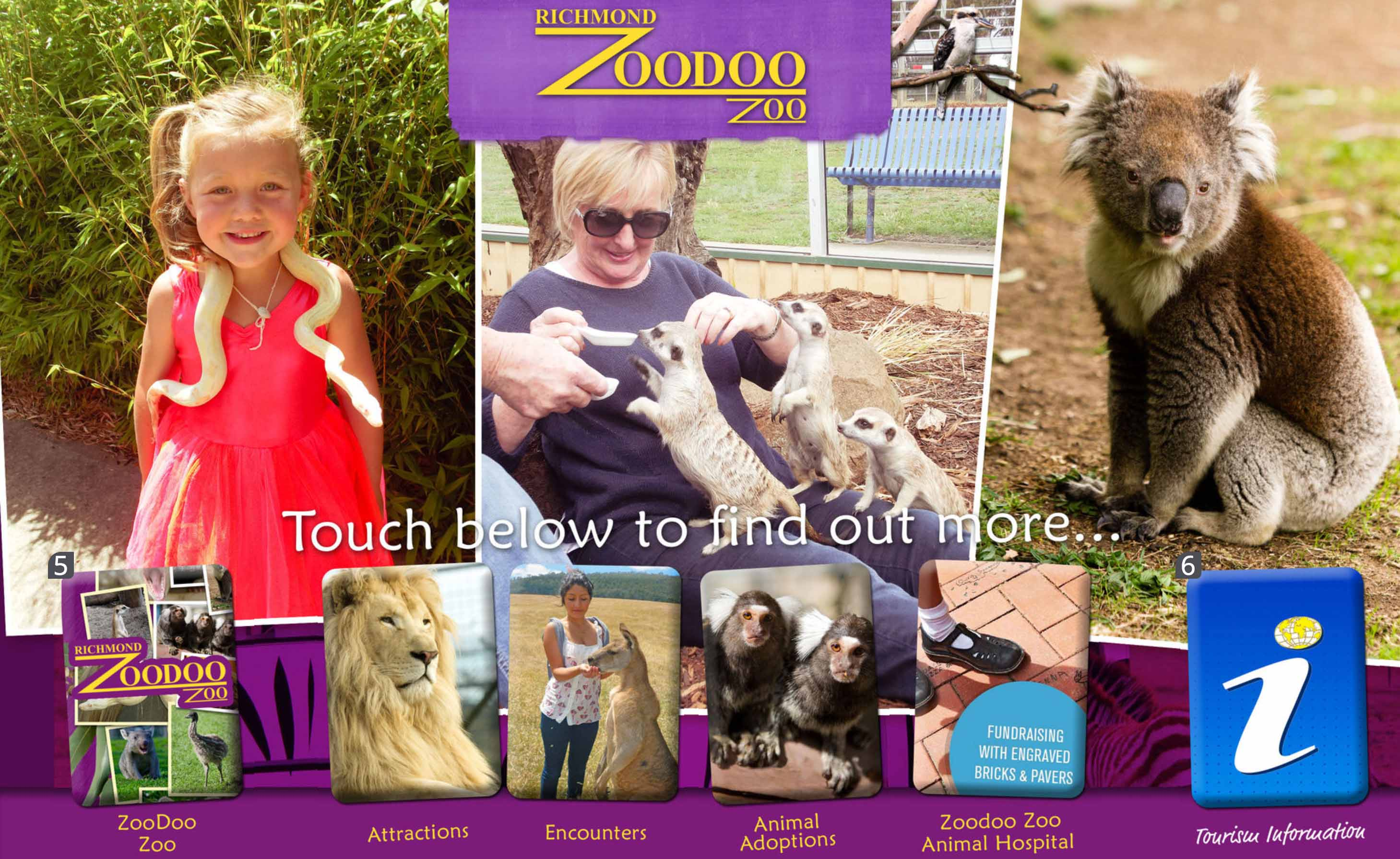 Richmond Zoodoo Zoo